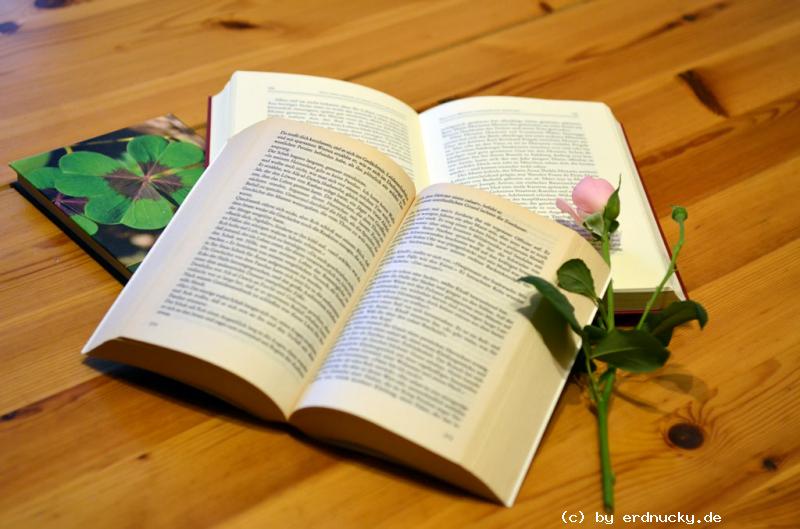 Foto: meine Literatur